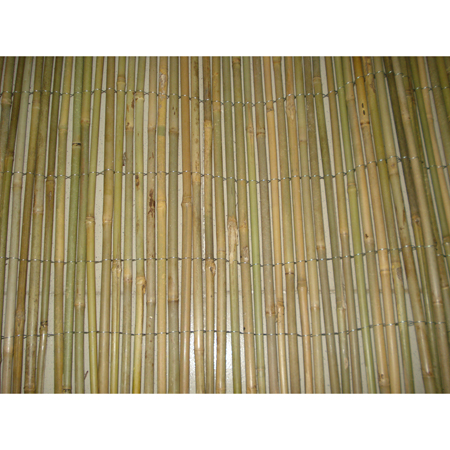 wire line outside woven bamboo fencing