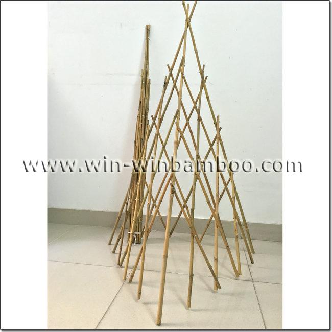 prb bamboo trellis pyramid shape