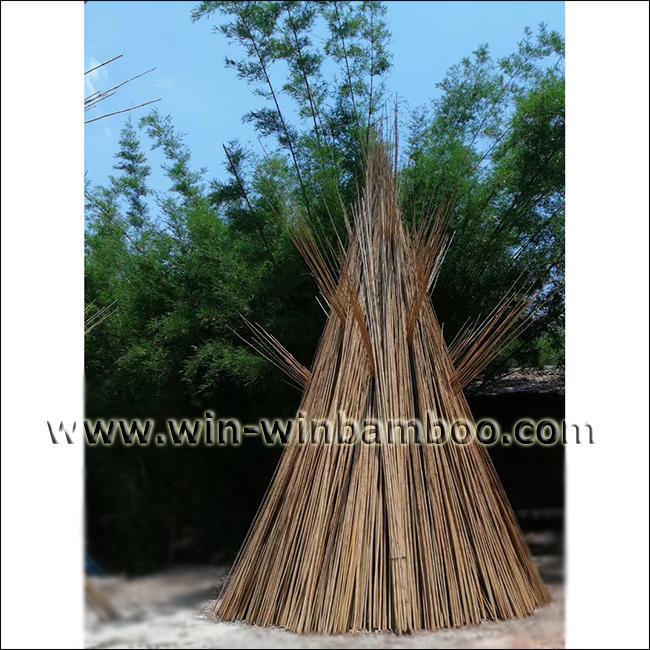 Tonkin bamboo canes for garden or farming supports